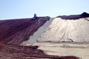 Delta Shake & Shingle (DSS) Landfill Closure