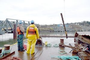 Plumper Bay and Ashe Head Remediation